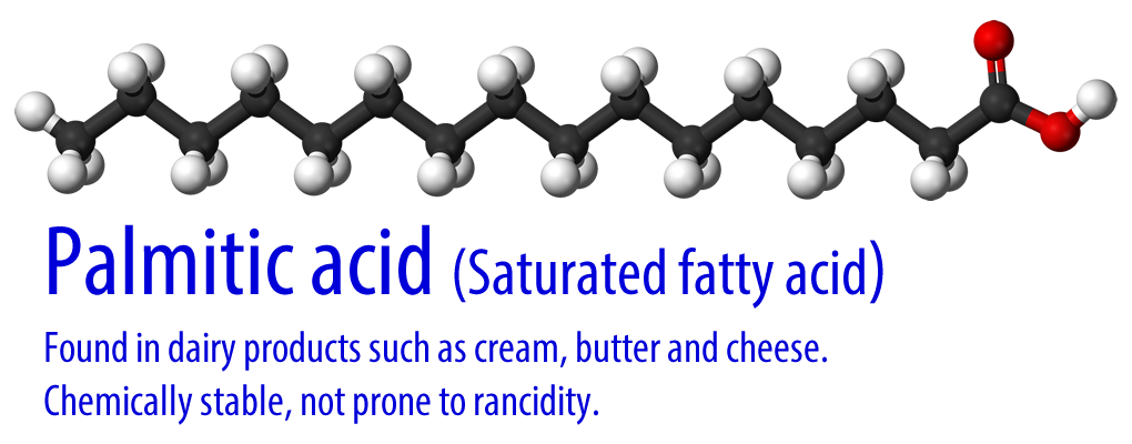 example of a monounsaturated fat