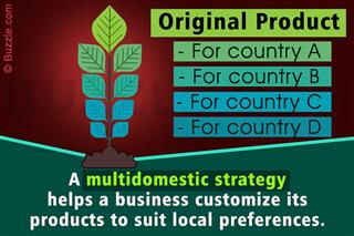 example of multidomestic strategy companies